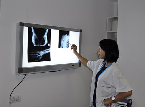 Dr_DURECI_DIANA_MIHAELA